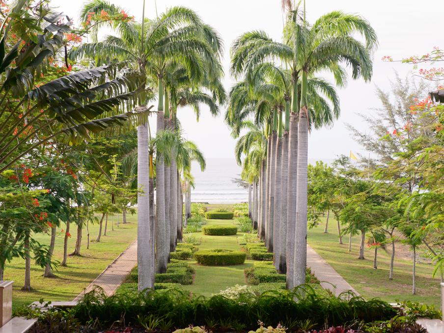 palmgardern
