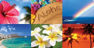 ハワイバリ島リゾート